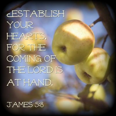 James 5.8